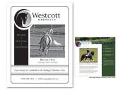 Brnd_Westcott2